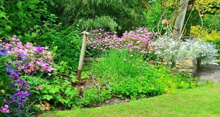 Garten mit Rasen und Blumen