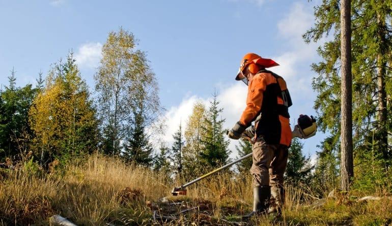 Motorsense-Gärtner-Wald