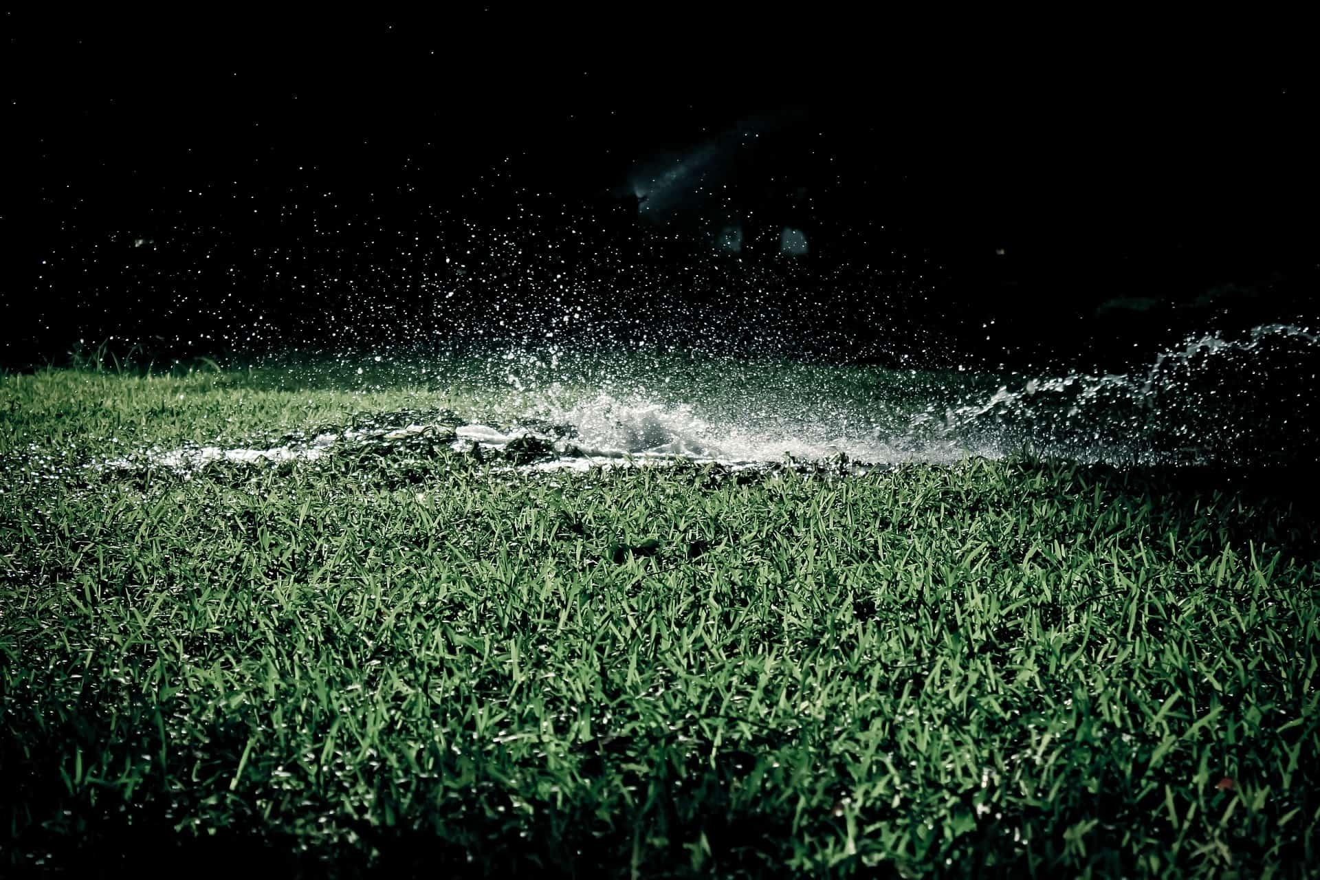 Bewässerungscomputer: Test & Empfehlungen (01/20)