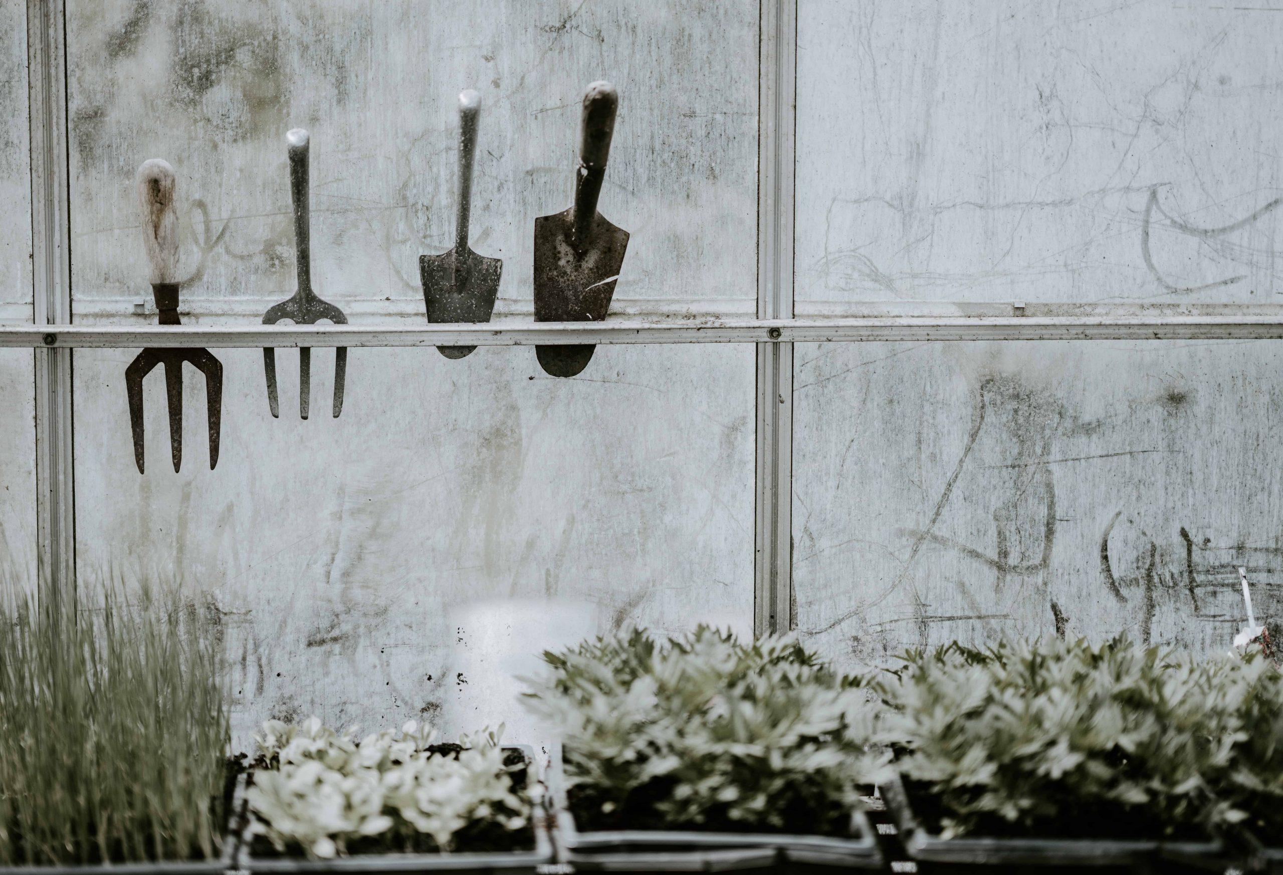 Gartenkralle: Test & Empfehlungen (04/20)
