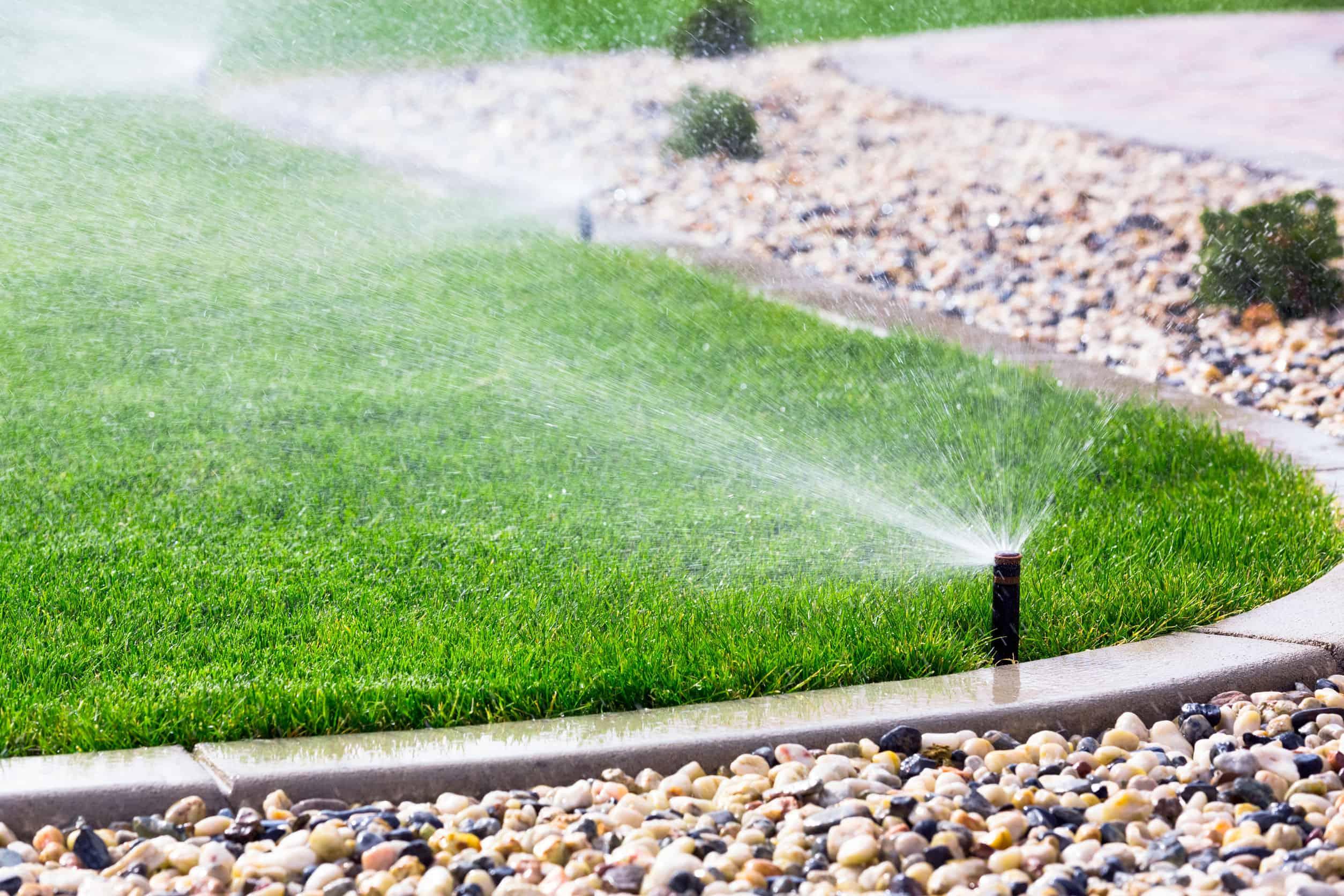 Automatische Bewässerung: Test & Empfehlungen (05/21)