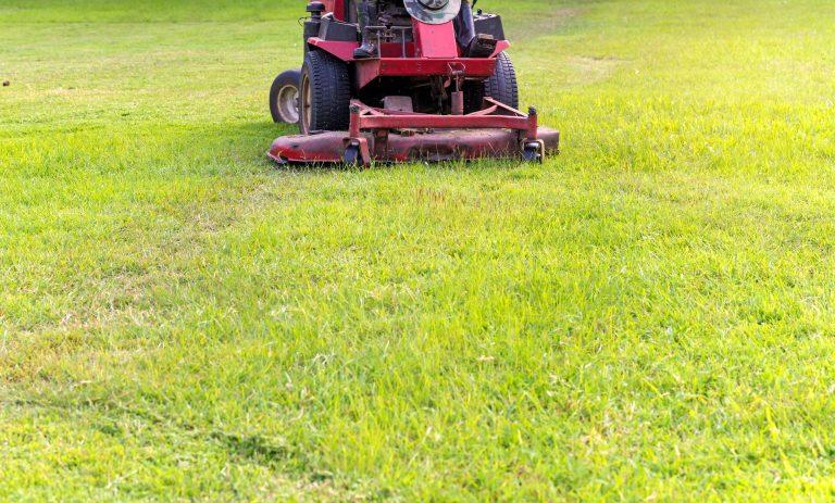 Mäher von vorne auf Rasen