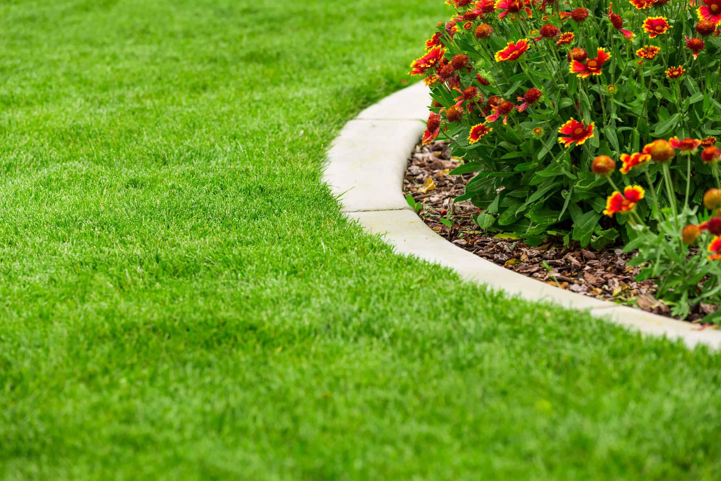 Beeteinfassung Test Empfehlungen 1119 Gartenspring
