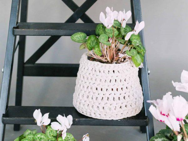 Blumen auf Holzleiter