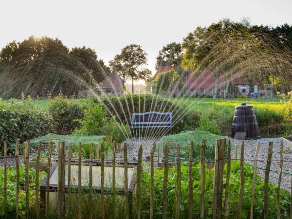 Beliebt Bevorzugt Automatische Bewässerung Test 2019 | Die besten Bewässerungen im #EY_73