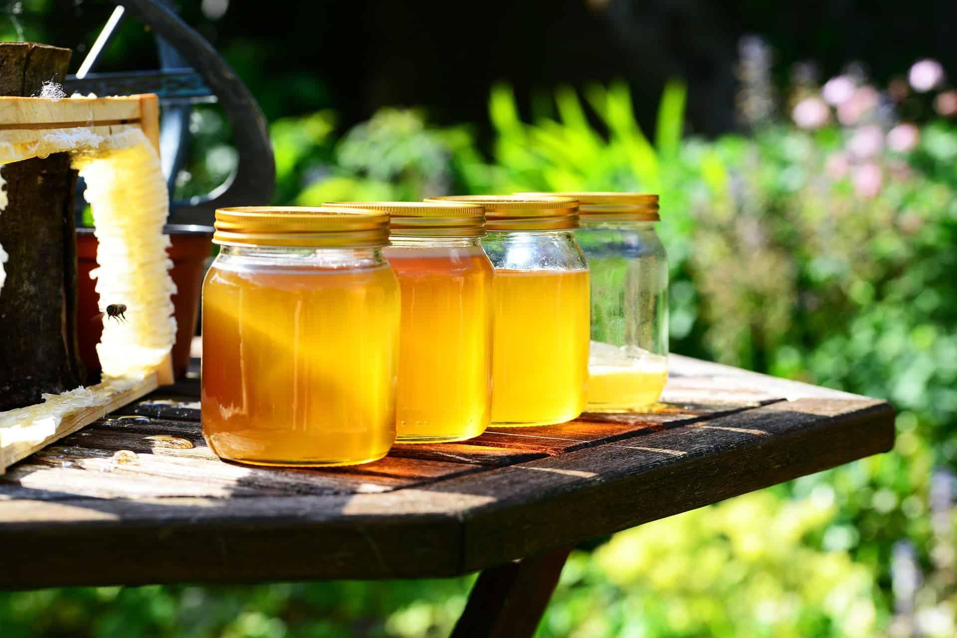 Honigschleuder