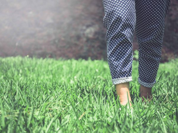 Legs of women walking on a green meadow.