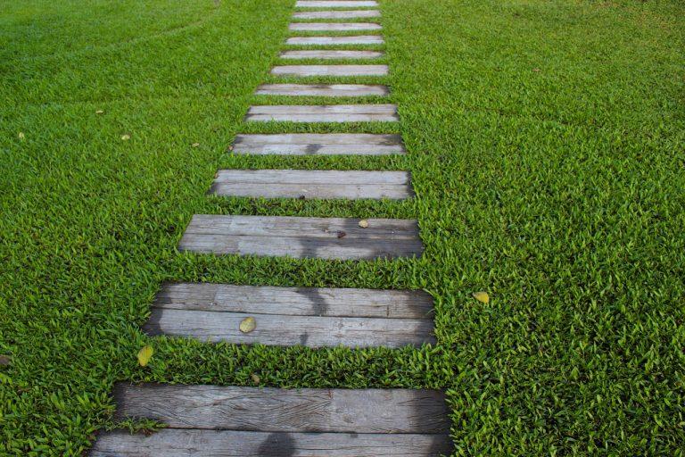 Rasen mit Holzweg