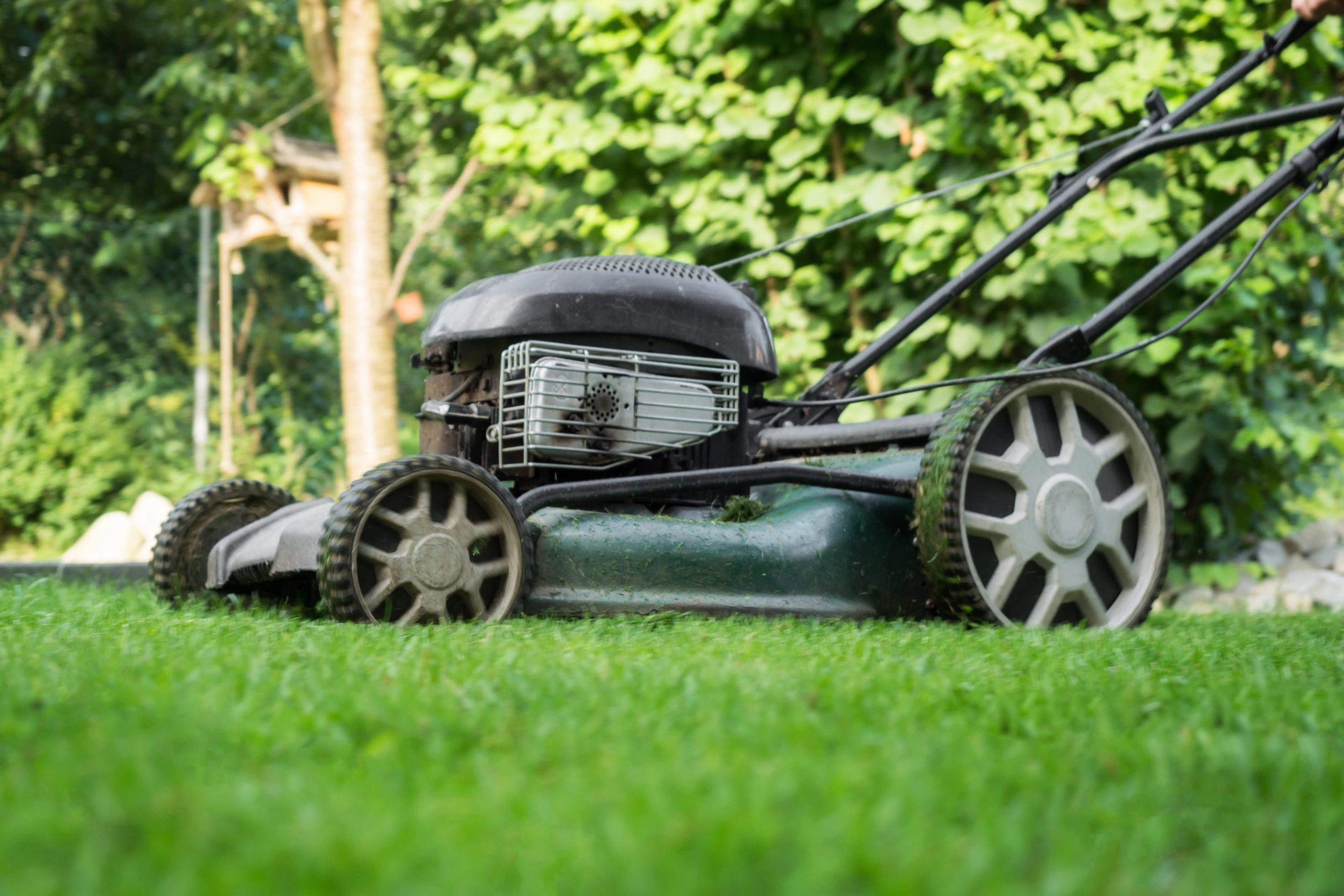 Hecht Rasenmäher