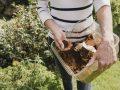 Kompostbeschleuniger: Test & Empfehlungen (01/21)