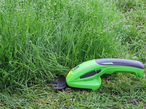 Rechargeable electric hand trimmer for cutting plants on green background on grass with copy space