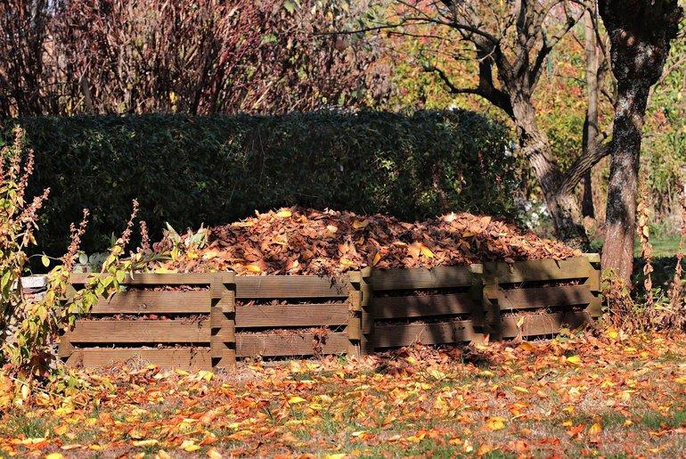 Ein Komposthaufen im Garten bedeckt mit Herbstlaub.